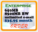 Enterprise Web Hosting Plan