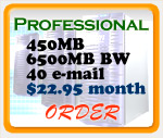 Professional Web Hosting Plan